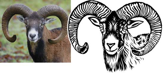 Vectorization of animals for cutting plotter and engraving: original and vector image.